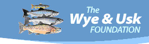 Wy & Usk Foundation
